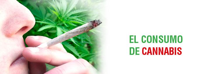 Consumo de cannabis en nuestros jóvenes