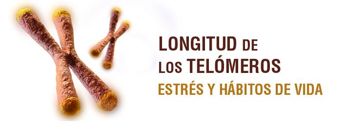 Longitud de los telómeros, estrés y hábitos de vida