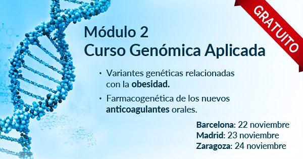 modulo2-web
