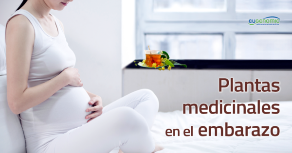 Plantas medicinales en el embarazo